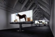 Doug Aitken, migration (empire), 2008, Installation view: Schirn Kunsthalle Frankfurt, 2015