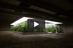 Doug Aitken, The Garden, 2017