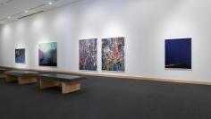 Installation view: Contemporary Photography Forum: Daniel Gordon, Paul Kneale, Florian Maier-Aichen,  Boca Raton Museum of Art, 2017