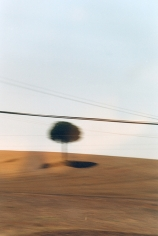 N II, 2000