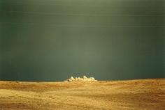 Kultivierte Landschaft, 2000