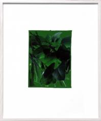 Grün auf Grün, 2013