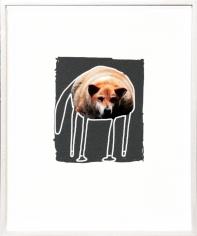 Hund in Grau, 2013