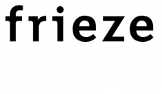 Frieze.com - Sara Knelman