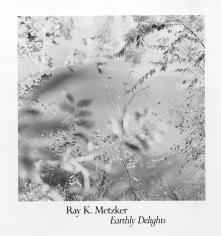 Ray Metzker