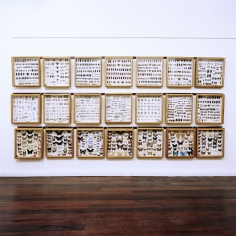 Simone Rosenbauer The Carnaby Collection of Beetles and Butterflies