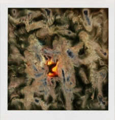 Lucas Samaras (b. 1936)Photo-Transformation, 10/21/73Instant dye diffusion transfer print (Polaroid SX-70, manipulated)3 1/8 x 3 1/18 inches, image4 1/4 x 3 1/2 inches, overall