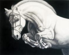 PICCILLO-Joseph_Horse_10_48x60