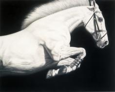 PICCILLO-Joseph_Horse_13_48x60