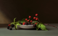 Early American, Blackberries, 2008. Chromogenic print, 12 x 17 3/4 inches.