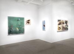Alex Prager, Compulsion, Installation View