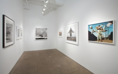 """Installation view, """"Beautiful Vagabonds: Birds in Contemporary Photography, Sound and Video,"""" Yancey Richardson Gallery, July 21- August 26, 2011"""