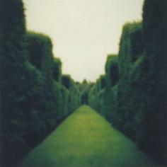 Misderden Park, England, 2000
