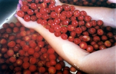 Cherries,2003, chromogenic print, available at 30 x 40 inches, edition 10