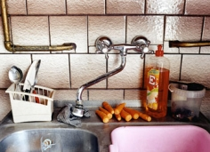 Carrots by the Sink, 2004, 20 x 24 inch chromogenic print, Signed, titled, dated and editioned on the verso, Edition of 15