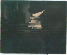 #25 from A Box of Ku, 1991