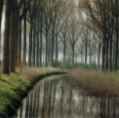 Damme, Belgium, 2004 (4-04-5c-4), 19 x 19 and 28 x 28 inch Chromogenic print, Edition of 15 per size