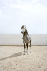 Untitled, 2011 Frame: 19 x 14.75 inches / Image: 10.5 x 7 inches Archival pigment print Edition of 8