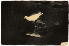 Untitled #13 from the series A Box of Ku, 2.5 x 4 inch gelatin silver print with mixed media