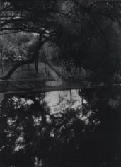 Josef Sudek Magic Garden, 1954/59