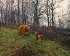 Saltville, VA (02-019-16L), 2002