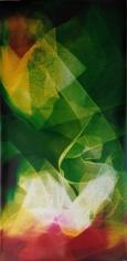 Lattice (Ambient) Shadowboxin III, 2014,61.5 x 30 inchunique chromogenic photogram