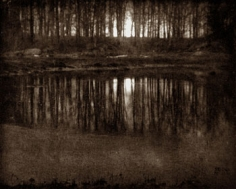 Eduard Steichen Moonlight: The Pond, 1906