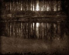Eduard Steichen Moonlight: The Pond, 1906