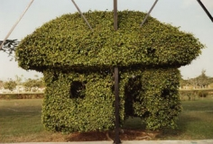 Edwardo del Valle & Mirta Gomez, Topiary, Merida, Yucatan, Mexico, 1998, 20 x 24 inch Chromogenic Print, Signed, dated, titled and editioned on verso, Edition of 20