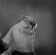 """A woman living by herself and her pet, 1974, Gelatin Silver Print, image 14 x 14"""" / paper 16 x 20"""", Signed, titled, editioned and dated in pencil on verso, Edition of 20"""