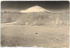 Masao Yamamoto, Untitled #278, from the series A Box of Ku. 4 x 6 inch Gelatin Silver print. Edition of 40.