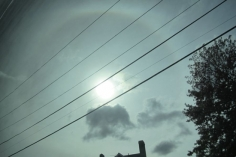 Sun Halo, Greyhound to DC #7, 2014, 18.5 x 27.5 inch chromogenic print