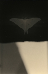 """Untitled #1597,"" 2010, Gelatin Silver print, 9.5 x 6.25 inches, ed. of 20"