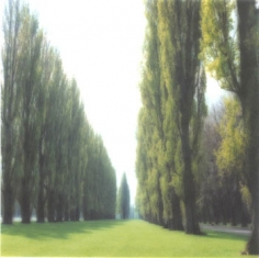 Parc de Sceaux, France (5-95-9c-9), 1995 Chromogenic print, 28 x 28 inches