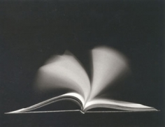 Chicago, 1988 Gelatin Silver Print