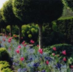 Parc de Sceaux, France, 2004 (4-04-67c-7), 19 x 19 and 28 x 28 inch Chromogenic print, Edition of 15 per size