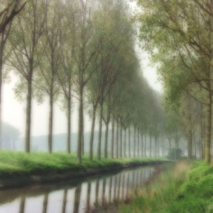 Damme, Belgium (5-95-26c-9), 1995  Chromogenic print, 28 x 28 inches