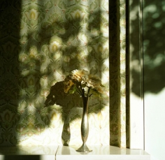 Untitled #305 (from Pool of Tears), 2008, 16 x 16 inch chromogenic print, Signed and editioned on verso, Edition of 10