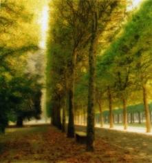 Parc de Sceaux, France, 1997 (10-97-7c-10), 19 x 19 and 28 x 28 inch Chromogenic print, Edition of 15 per size