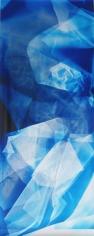 Lattice (Ambient) #117, 2014,72 x 30 inchchromogenic photogram