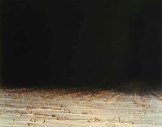 Nadav Kander Field II, 2001