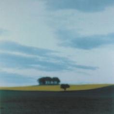 Tayside, Scotland, 1994