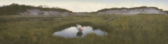 The Lake of Dreams, 2002,