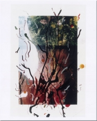Rebecca Horn  Untitled, 2001  c-print of hand painted photograph  39 3/8 x 27 7/8 inches  Edition of 15  $5,000