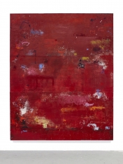 Hugo McCloud Sean Kelly Gallery