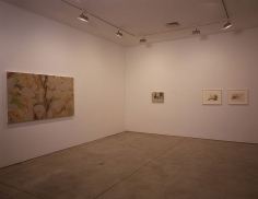 Helmut Dorner Sean Kelly Gallery