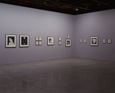 Robert Mapplethorpe Andy Warhol Sean Kelly Gallery