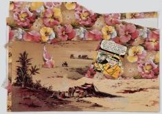 John Ashbery Desert Flowers