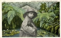 Conservatory 1972 collage