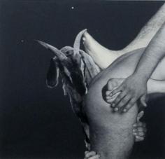 Goat 1972 paper casein motage